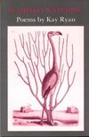 Flamingo watching - Kay Ryan